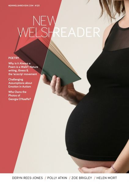 New Welsh Reader (New Welsh Review 120, Summer 2019)
